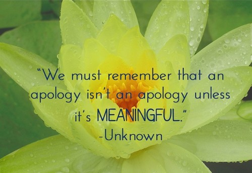 7 Ingredients of An Apology